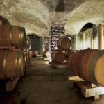 Elena Walch-WIne-cellar