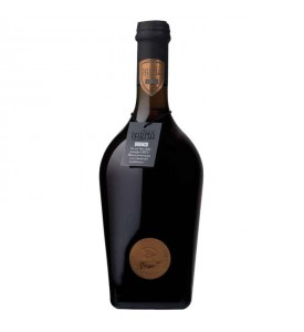Parma Strong Ale Bronze - with yeasts of Lambrusco